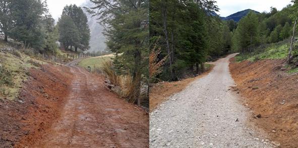 Restoration Of Landscapes